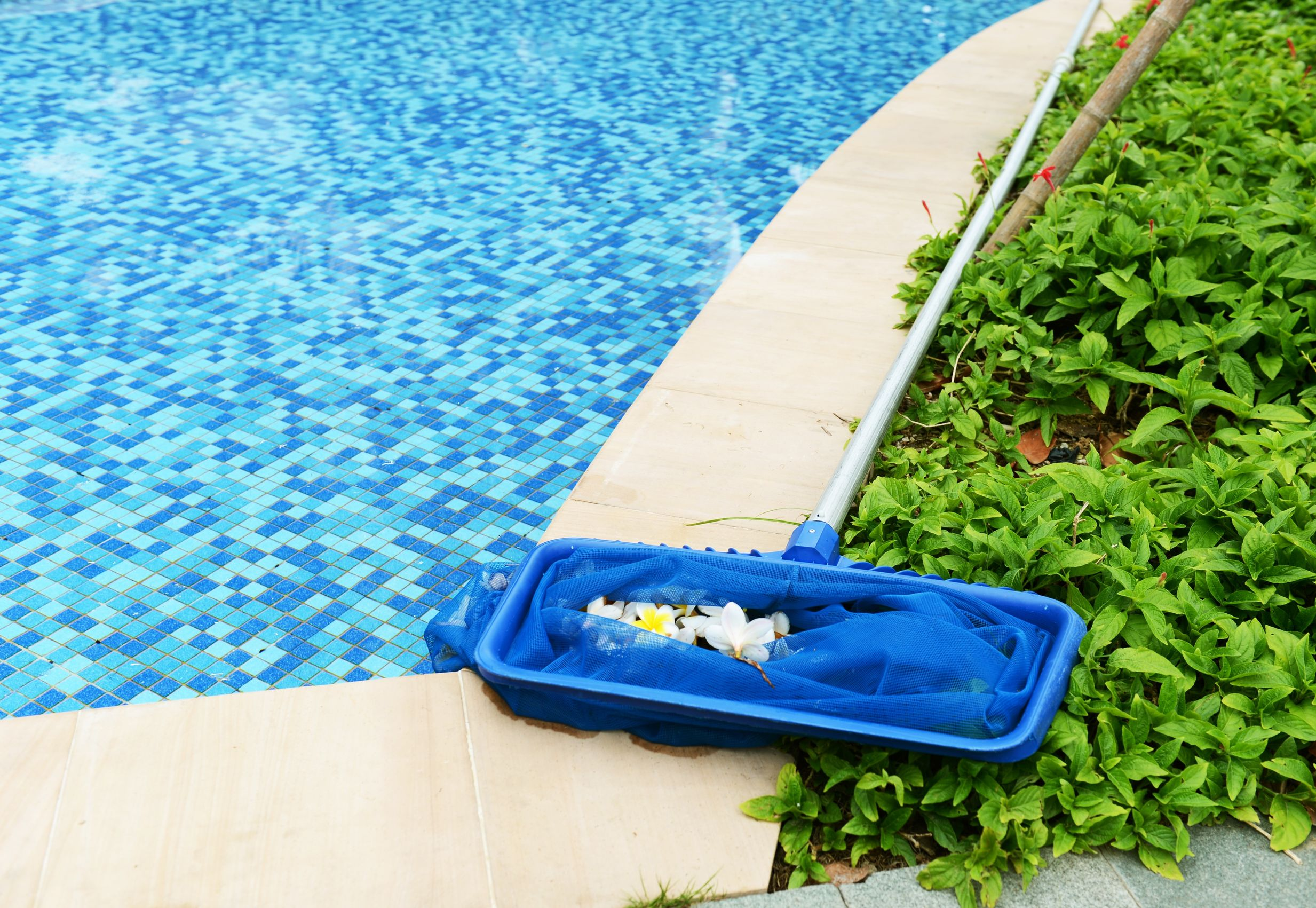 Prepare For Your Pool Party With Preventative Maintenance Crystal Blue Pool Services